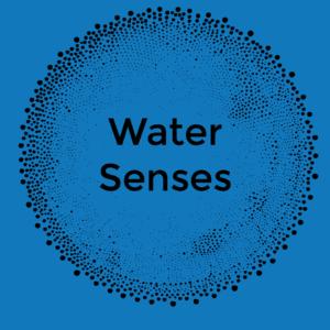 Water Senses Publication