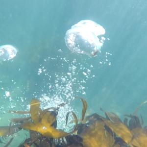 Mullaghmore Seawater Orb